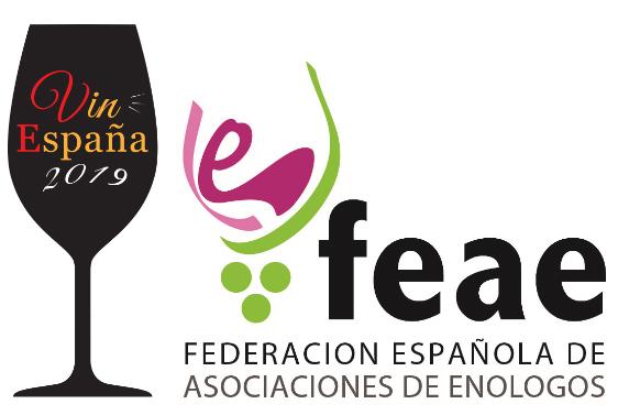 concurso vinespana 2019