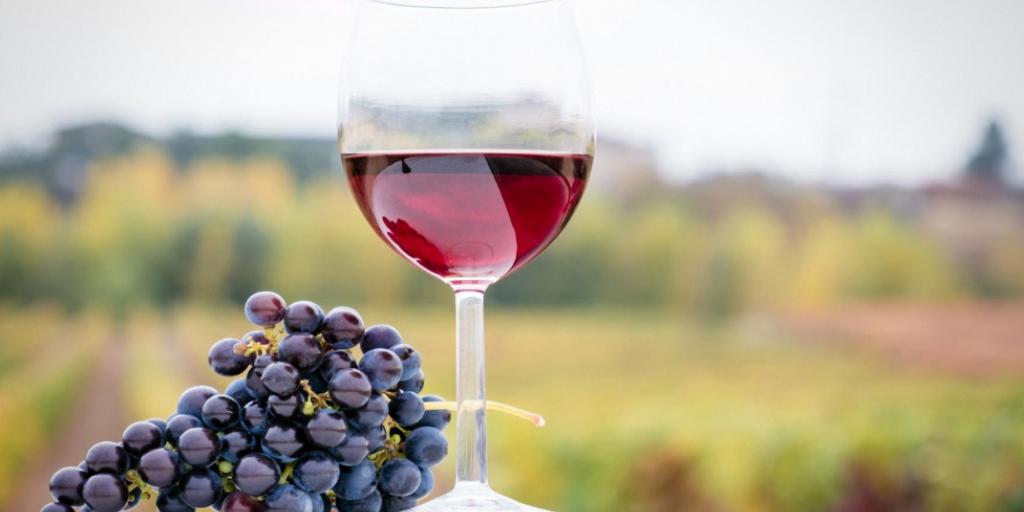 XXXII premios a la calidad de los vinos embotellados denominación de origen la Mancha