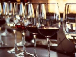 vinos premiados vinespaña 2021